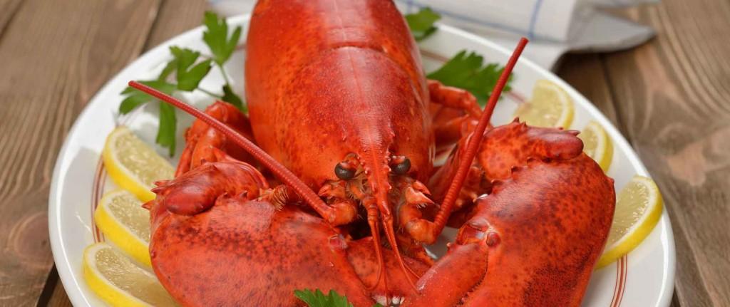 Seafood Restaurants in Waterbury